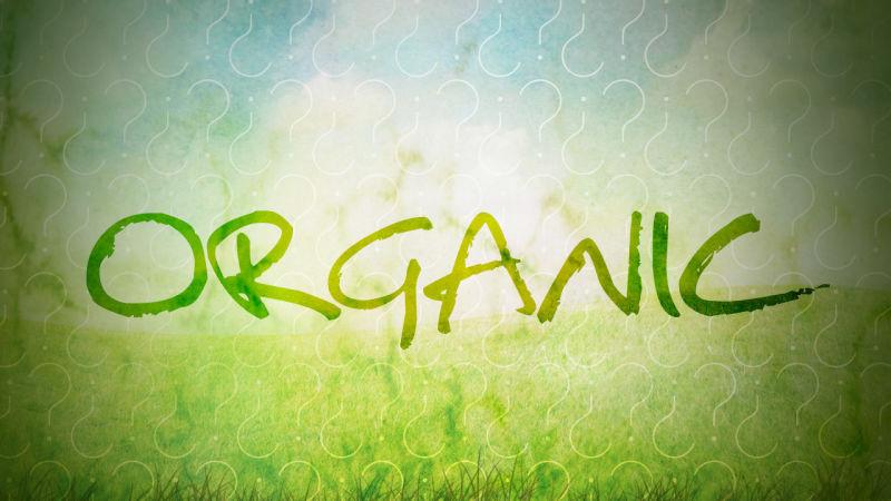 Органічне землеробство в Україні зростає
