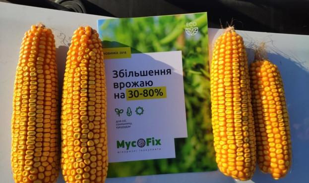 MycoFix – новий препарат родючості землі та захисту від хвороб